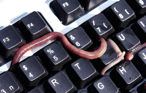 Five interesting facts about the Morris worm (for its 25th