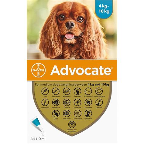 Advocate for Dogs 8