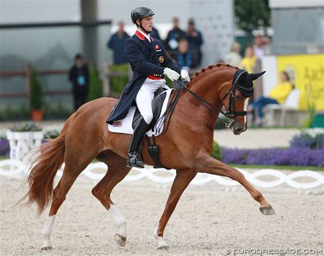 Woodlander Farouche Retired from Sport, To Become Broodmare