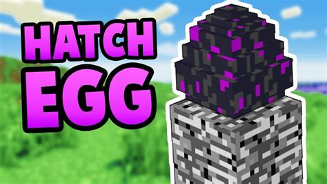 HOW TO HATCH THE ENDER DRAGON EGG! - YouTube